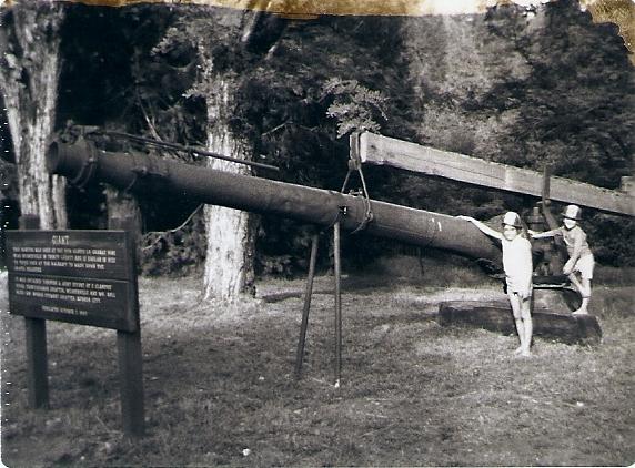 1969Digginsset