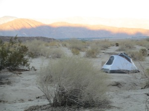 Dusk in the Anza Borrego Desert