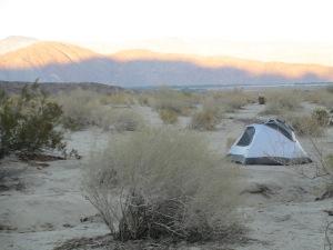 Dusk in the Anza Borrego Desert